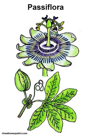 Addio mal di testa - image Passiflora on http://rimediomeopatici.com