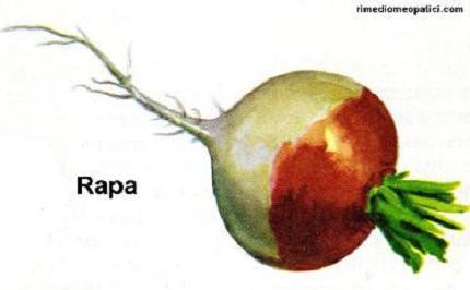 Ritorna la voce - image RAPA on http://rimediomeopatici.com
