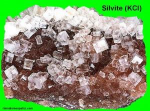 Kalium chloratum - image SILVITE2-300x222 on http://rimediomeopatici.com