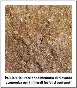 Fosforite