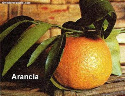 Alopecia Calvizie - image ARANCIA9 on https://rimediomeopatici.com
