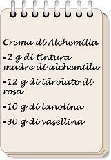 W i segreti della nonna - image Crema-di-Alchemilla-6 on https://rimediomeopatici.com