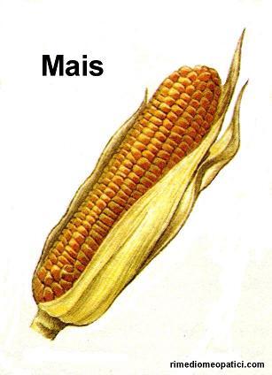 Ok con depurativi e diuretici - image MAIS2 on https://rimediomeopatici.com