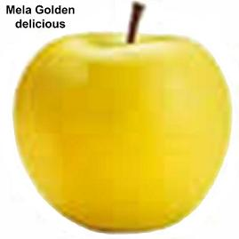 Melo - image Mela-Golden-delicious on https://rimediomeopatici.com