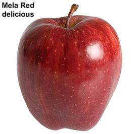 Melo - image Mela-Red-delicious on https://rimediomeopatici.com