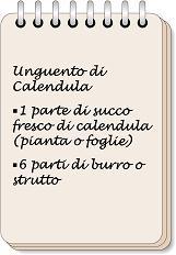W i segreti della nonna - image Unguento-di-Calendula-6 on https://rimediomeopatici.com