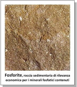 Fosforo: proprietà, benefici, usi - image Fosforite_3_6.5 on https://rimediomeopatici.com